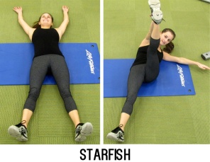 Lay on your back with your arms and feet spread out like a star. Lift your left leg and your right arm to meet in the middle and lower. Repeat for 30 seconds without resting, after two rounds switch sides